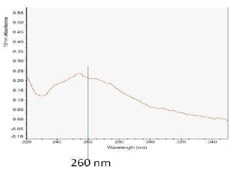 Quantification (Q) image for TotalExoRNA™ Overall exosome immunocapture and RNA extraction kit (Biological Fluids/Cell Media, 10 reactions) (ABIN2868142)