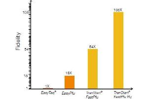 image for TransStart® FastPfu Fly DNA Polymerase (ABIN5519534)
